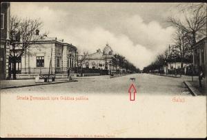 11 #Str Domn-Casa Navimpex-cu catel (Fp)