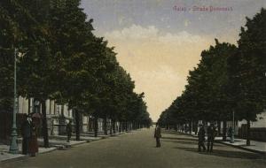 32 Strada Domneasca o padure lunga (CPI colectia Valeriu Elefte
