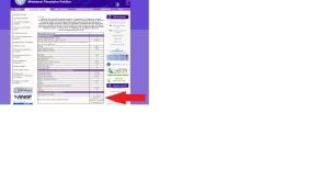 ecoman analiz serv mfinante