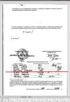 braileanu valentina 2014 prezidentiale membru PER 49