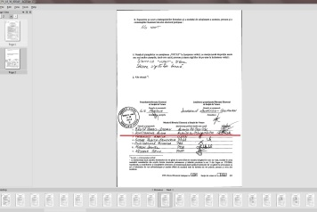 dumitrache alina 2014 prezidentiale membru PSD-UNPR-PC 36
