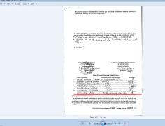 grigoriu alin silviu 2014 prezidentiale PNL 144