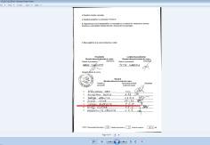 neagu aurentia 2012 parlamentare PRM 81