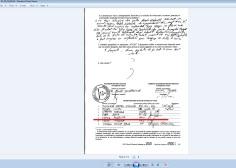 neagu aurentia 2014 prezidentiale membru PRM 79