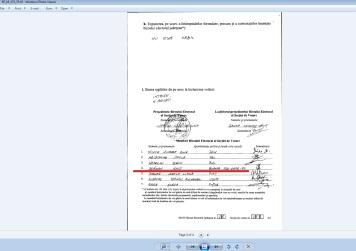 nedelcu sorin 2014 EUR membru PNL 173